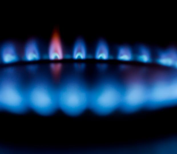 Bonamy Finch Case Study domestic energy